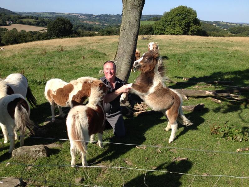 Selwyn & Ponies 2015 Good